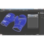 Boxing Gloves Everlast Blue. Preview 28