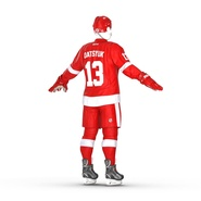 Hockey Equipment Detroit Red Wings. Preview 12