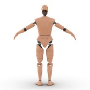 Male Crash Test Dummy Rigged for Cinema 4D. Preview 11