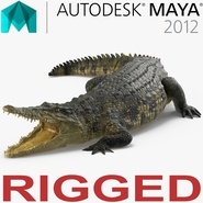 Crocodile Rigged for Maya. Preview 1