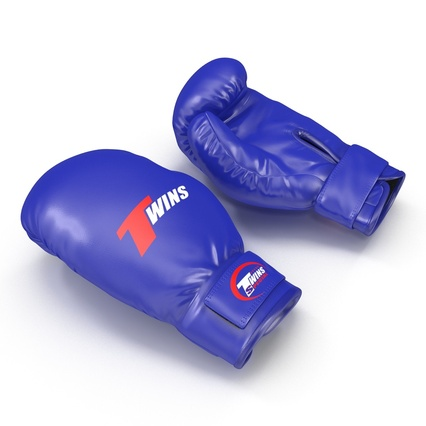 Boxing Gloves Twins Blue. Render 6