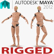 Male Crash Test Dummy Rigged for Maya