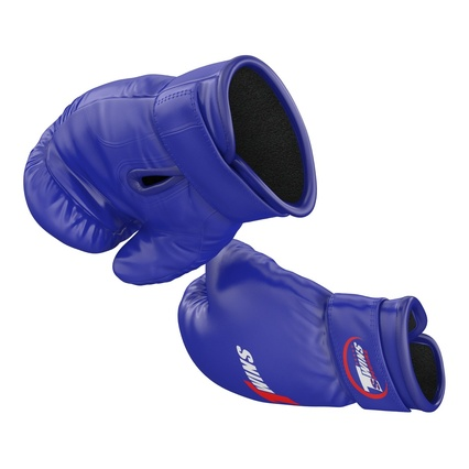 Boxing Gloves Twins Blue. Render 12