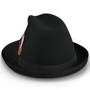 Fedora Hat 2. Preview 14