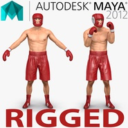 Boxer Man Rigged for Maya