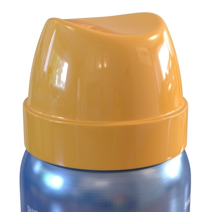 Metal Bottle With Sprayer Cap Generic. Render 14