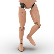 Male Crash Test Dummy Rigged for Cinema 4D. Preview 26