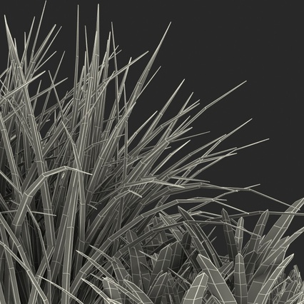 Grass Collection. Render 23