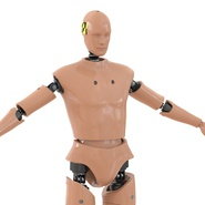 Male Crash Test Dummy Rigged for Cinema 4D. Preview 16