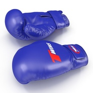 Boxing Gloves Twins Blue. Preview 7