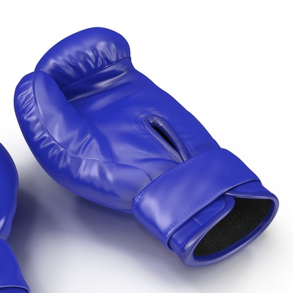 Boxing Gloves Twins Blue. Render 21