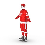 Hockey Equipment Detroit Red Wings. Preview 5