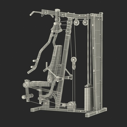 Weight Machine 2. Render 46