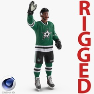 Hockey Player Stars Rigged for Cinema 4D