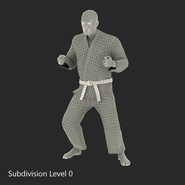 Karate Fighter Rigged for Cinema 4D. Preview 47