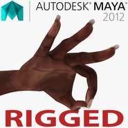 Female Hand African American 2 Rigged for Maya