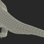Tyrannosaurus Rex Rigged for Maya. Preview 38