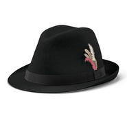 Fedora Hat 2. Preview 4