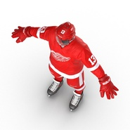 Hockey Equipment Detroit Red Wings. Preview 17
