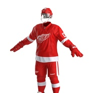 Hockey Equipment Detroit Red Wings. Preview 19