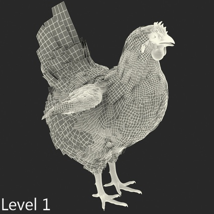 White Chicken. Render 13