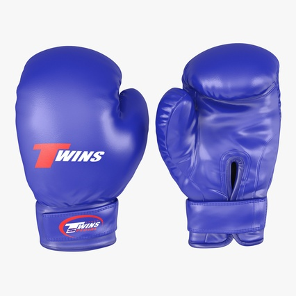 Boxing Gloves Twins Blue. Render 1