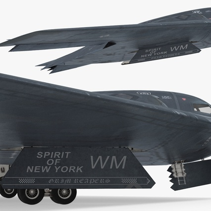 Stealth Bomber B-2 Spirit Rigged. Render 15