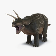 Triceratops Rigged