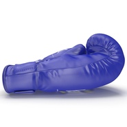 Boxing Gloves Everlast Blue. Preview 12