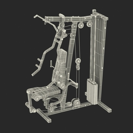 Weight Machine 2. Render 43