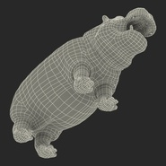 Hippopotamus Rigged for Cinema 4D. Preview 33