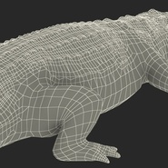 Crocodile Rigged for Maya. Preview 28