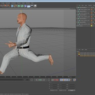 Karate Fighter Rigged for Cinema 4D. Preview 46