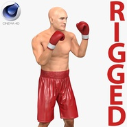Boxer Man Rigged 2 for Cinema 4D