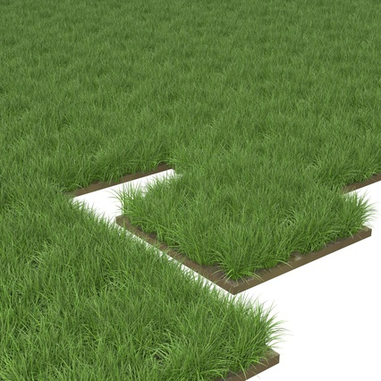 Grass Fields Collection 2. Render 10
