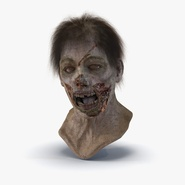 Zombie Head with Hair Rigged