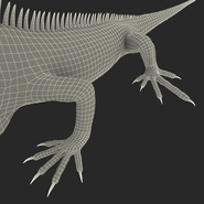 Green Iguana Rigged for Cinema 4D. Preview 34