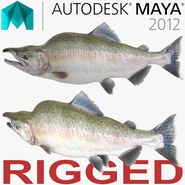 Pink Salmon Rigged for Maya. Preview 1