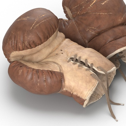 Old Leather Boxing Glove(1). Render 24