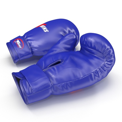 Boxing Gloves Twins Blue. Render 10