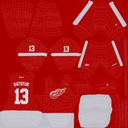 Hockey Equipment Detroit Red Wings. Preview 48