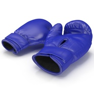 Boxing Gloves Blue. Preview 8
