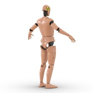 Male Crash Test Dummy Rigged for Cinema 4D. Preview 10