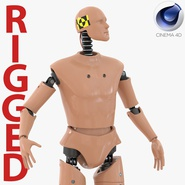 Male Crash Test Dummy Rigged for Cinema 4D. Preview 1