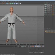Karate Fighter Rigged for Cinema 4D. Preview 45