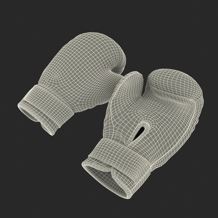 Boxing Gloves Twins Blue. Render 4