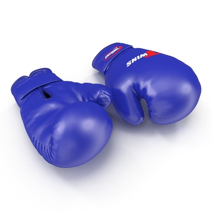 Boxing Gloves Twins Blue. Render 9