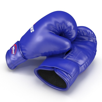 Boxing Gloves Twins Blue. Render 14
