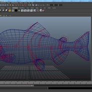 Pink Salmon Rigged for Maya. Preview 17