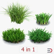 Grass Collection. Preview 1